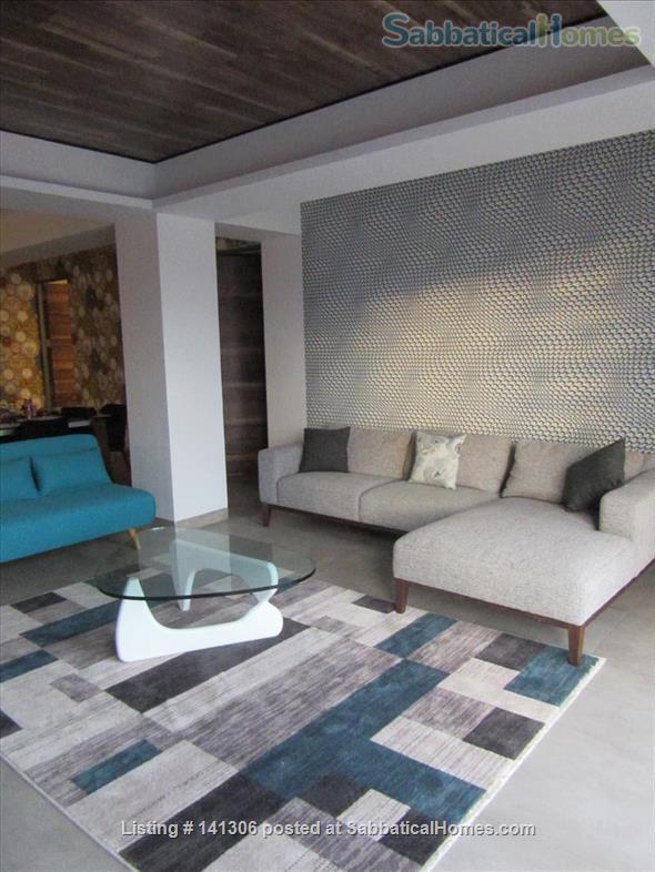 Spacious 2 or 3 BR modern apartment in central Playa del Carmen Home Rental in Playa del Carmen, Q.R., Mexico 9
