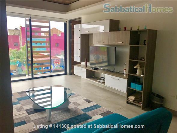 Spacious 2 or 3 BR modern apartment in central Playa del Carmen Home Rental in Playa del Carmen, Q.R., Mexico 7