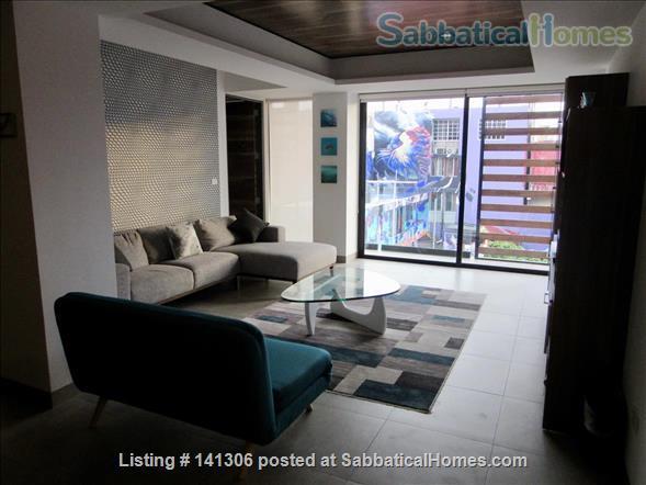 Spacious 2 or 3 BR modern apartment in central Playa del Carmen Home Rental in Playa del Carmen, Q.R., Mexico 8