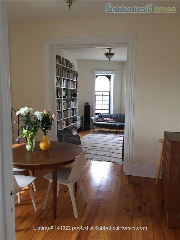 Beautiful, sunny, spacious 2.5-bedroom apartment in the center of Park Slope Home Rental in Park Slope, New York, United States 4