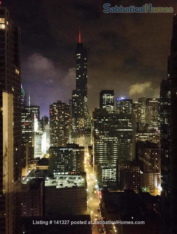 Beautiful, luxurious one bedroom condo for rent (reduced price) Home Rental in Chicago, Illinois, United States 9