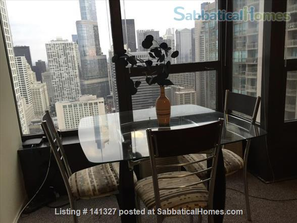 Beautiful, luxurious one bedroom condo for rent (reduced price) Home Rental in Chicago, Illinois, United States 1
