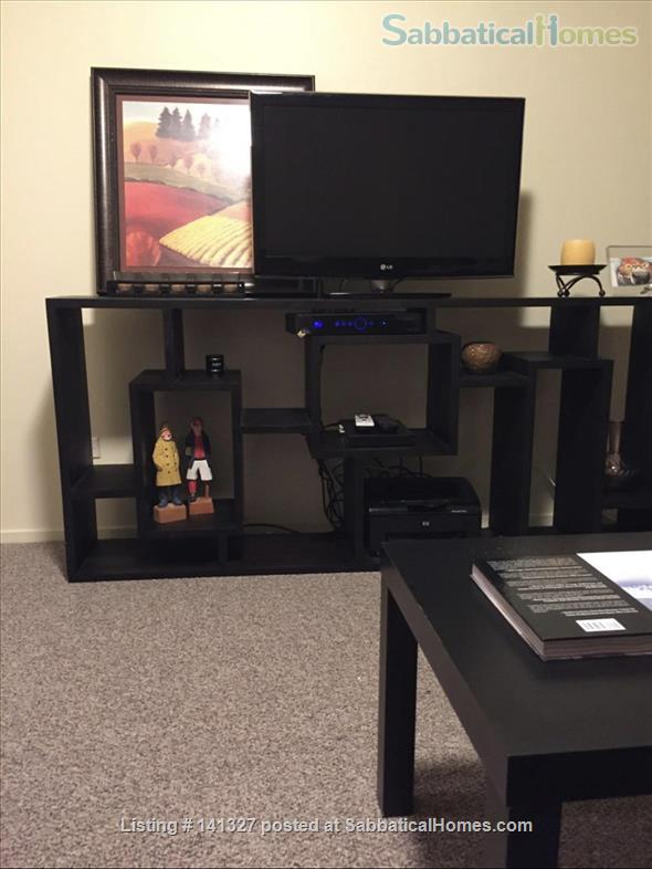 Beautiful, luxurious one bedroom condo for rent (reduced price) Home Rental in Chicago, Illinois, United States 2