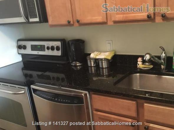 Beautiful, luxurious one bedroom condo for rent (reduced price) Home Rental in Chicago, Illinois, United States 3