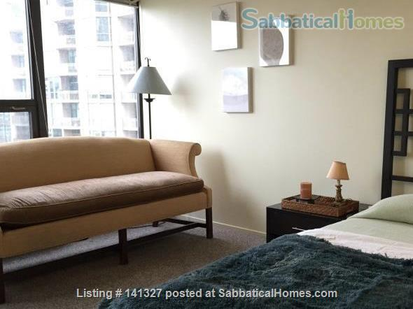 Beautiful, luxurious one bedroom condo for rent (reduced price) Home Rental in Chicago, Illinois, United States 5