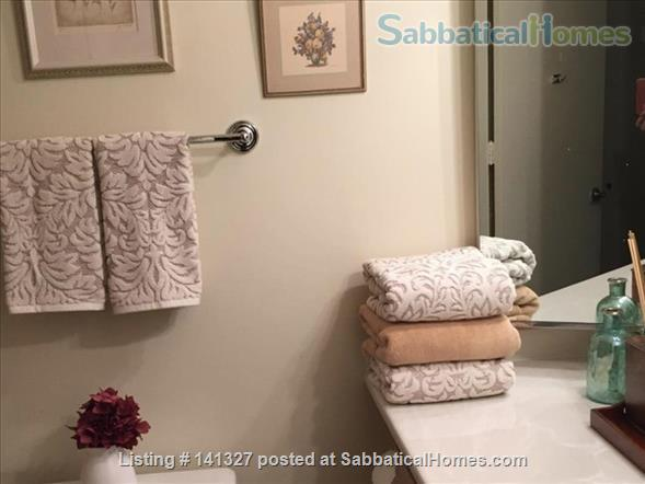 Beautiful, luxurious one bedroom condo for rent (reduced price) Home Rental in Chicago, Illinois, United States 6