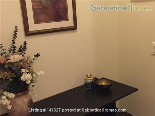 Beautiful, luxurious one bedroom condo for rent (reduced price) Home Rental in Chicago, Illinois, United States 7