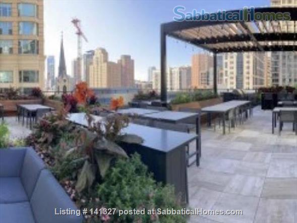 Beautiful, luxurious one bedroom condo for rent (reduced price) Home Rental in Chicago, Illinois, United States 8