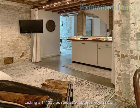 Spacious Garden-Level Loft near Harvard square Home Rental in Cambridge, Massachusetts, United States 1
