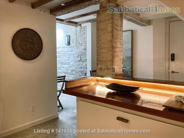 Spacious Garden-Level Loft near Harvard square Home Rental in Cambridge, Massachusetts, United States 0