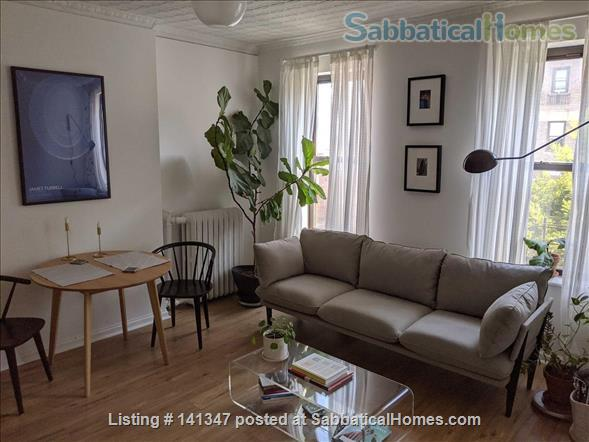 Lovely One Bedroom, One Bathroom Apartment With An Office Space Home Rental in Kings County, New York, United States 1