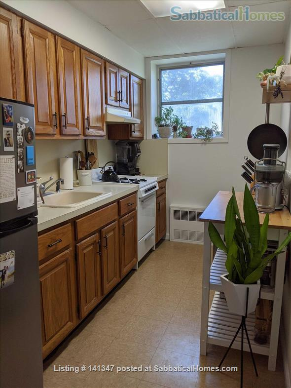 Lovely One Bedroom, One Bathroom Apartment With An Office Space Home Rental in Kings County, New York, United States 6