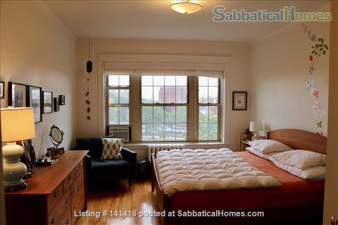 Large, cheerful, light-filled & charming 2-bedroom apartment (Harvard Square) Home Rental in Cambridge, Massachusetts, United States 1