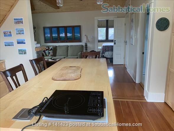 Chapman Street Loft - Close to Ocean, Park and Cook Street Village Home Rental in Victoria, British Columbia, Canada 2