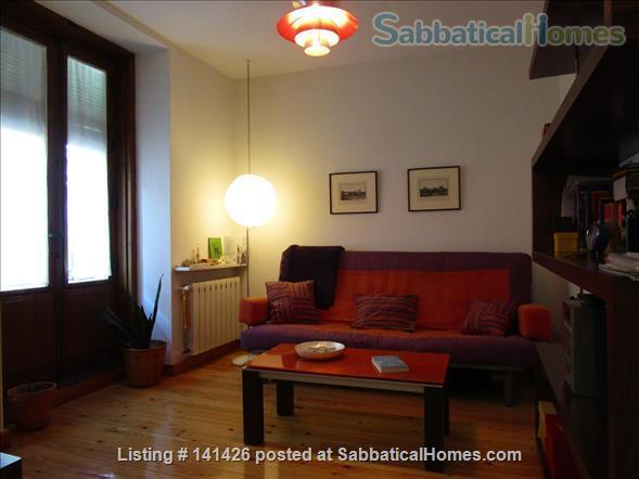 Excellent full-size one bedroom apartment Home Rental in Madrid, Comunidad de Madrid, Spain 5