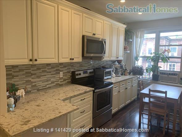 Large Apartment in North Brooklyn Home Rental in Greenpoint, New York, United States 3