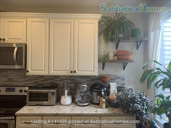 Large Apartment in North Brooklyn Home Rental in Greenpoint, New York, United States 5