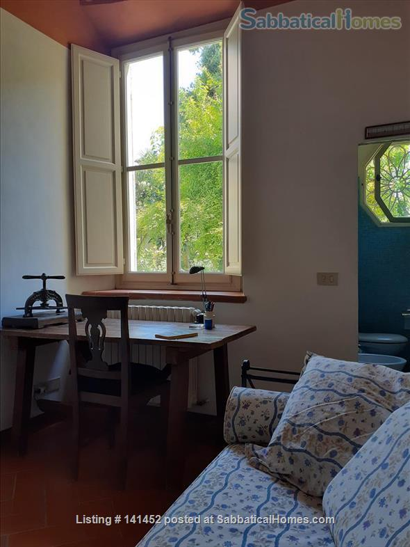 silent apartment overlooking a garden Home Rental in Florence, Toscana, Italy 5