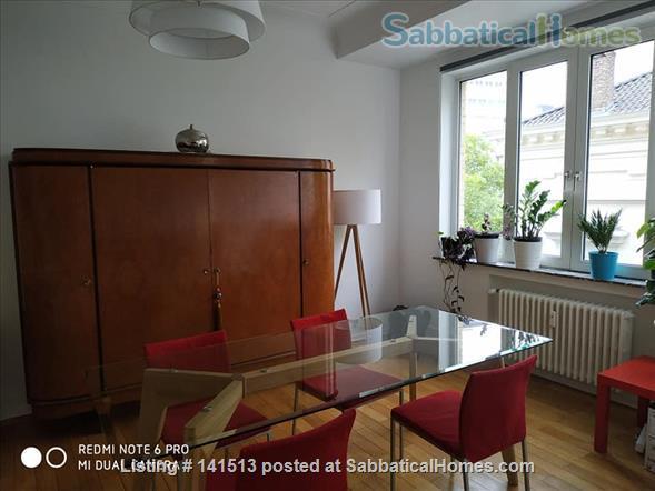 fully renovated 2-bedroom flat on Av Louise Home Rental in Bruxelles, Bruxelles, Belgium 5