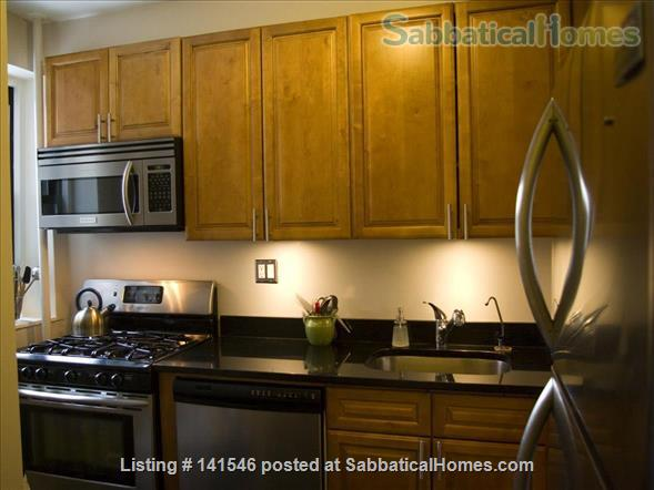 Spacious 2BR Apartment in Fort Greene, Brooklyn Home Rental in Brooklyn, New York, United States 5