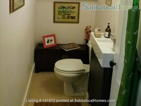 Charming 3 br apartment East Side of Providence Home Rental in Providence, Rhode Island, United States 5