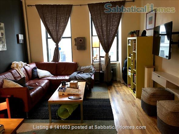 Sunny, High-Ceiling, Fully Furnished True 1-BR Corner Apartment Border of Crown Heights and Bed Stuy, Pet Friendly Home Rental in Bedford-Stuyvesant, New York, United States 1