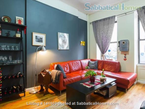 Sunny, High-Ceiling, Fully Furnished True 1-BR Corner Apartment Border of Crown Heights and Bed Stuy, Pet Friendly Home Rental in Bedford-Stuyvesant, New York, United States 0