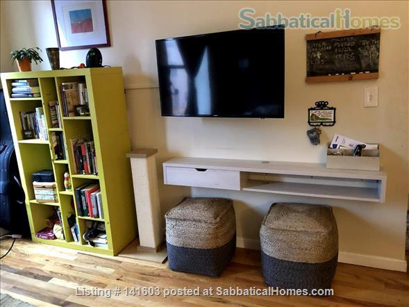 Sunny, High-Ceiling, Fully Furnished True 1-BR Corner Apartment Border of Crown Heights and Bed Stuy, Pet Friendly Home Rental in Bedford-Stuyvesant, New York, United States 2