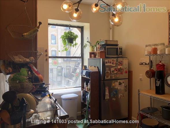 Sunny, High-Ceiling, Fully Furnished True 1-BR Corner Apartment Border of Crown Heights and Bed Stuy, Pet Friendly Home Rental in Bedford-Stuyvesant, New York, United States 5