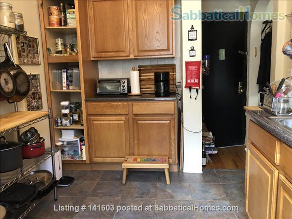 Sunny, High-Ceiling, Fully Furnished True 1-BR Corner Apartment Border of Crown Heights and Bed Stuy, Pet Friendly Home Rental in Bedford-Stuyvesant, New York, United States 6