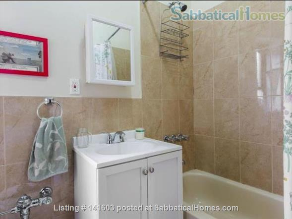 Sunny, High-Ceiling, Fully Furnished True 1-BR Corner Apartment Border of Crown Heights and Bed Stuy, Pet Friendly Home Rental in Bedford-Stuyvesant, New York, United States 8