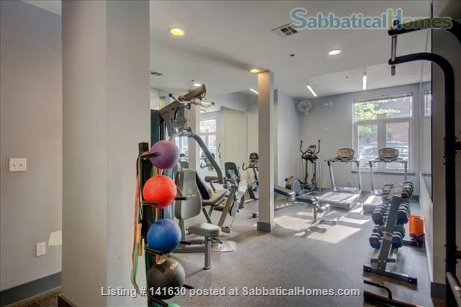 Modern, sun filled  studio plus loft in the heart of Williamsburg w/ Gym, Roof Deck, Balcony Home Rental in Southside, New York, United States 6