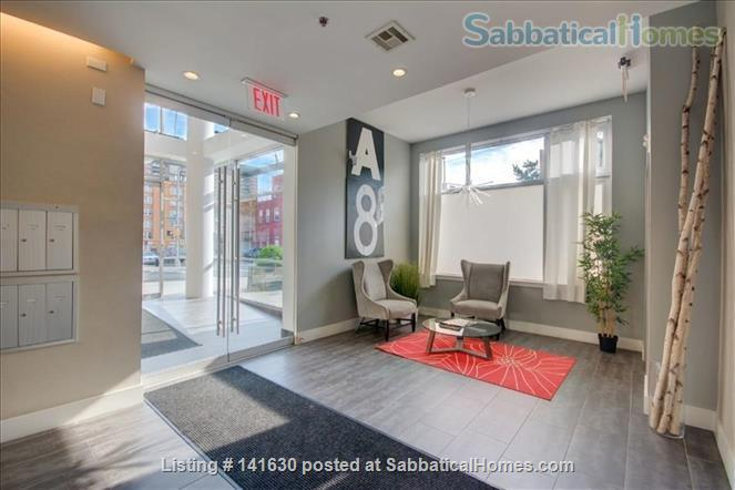 Modern, sun filled  studio plus loft in the heart of Williamsburg w/ Gym, Roof Deck, Balcony Home Rental in Southside, New York, United States 7