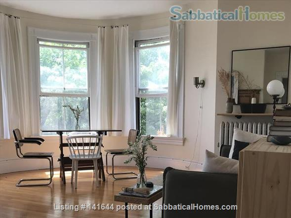 Artful 1br in Harvard square Home Rental in Cambridge, Massachusetts, United States 1