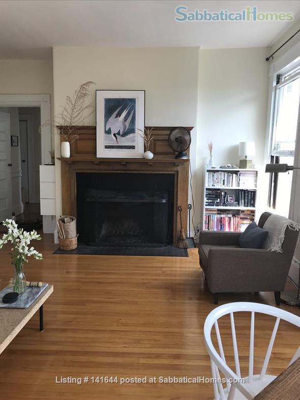Artful 1br in Harvard square Home Rental in Cambridge, Massachusetts, United States 0
