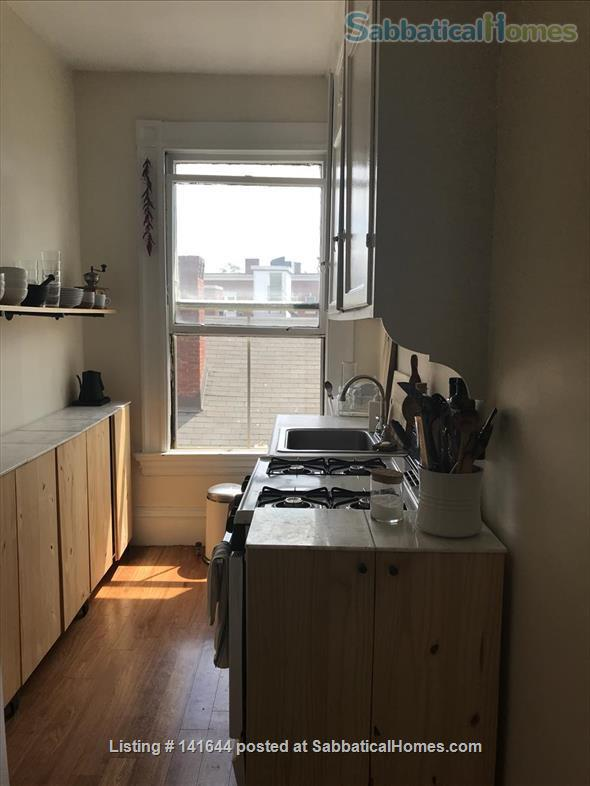Artful 1br in Harvard square Home Rental in Cambridge, Massachusetts, United States 4