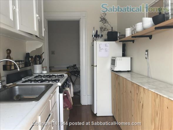 Artful 1br in Harvard square Home Rental in Cambridge, Massachusetts, United States 5