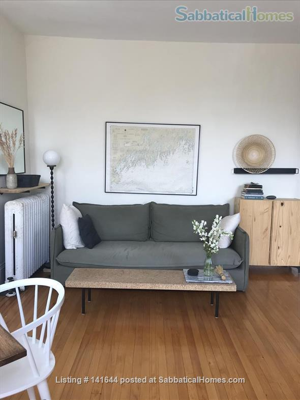 Artful 1br in Harvard square Home Rental in Cambridge, Massachusetts, United States 7