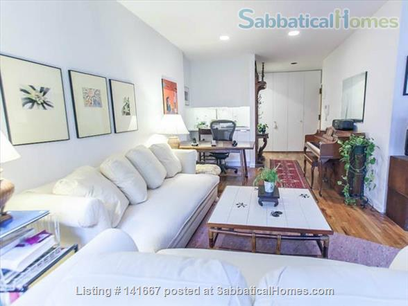 Sunny Spacious Work From Home in Modern Chelsea Townhouse Home Rental in New York, New York, United States 2