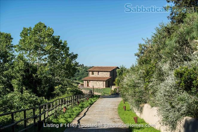 Your home with a view in Tuscany Home Rental in Scansano, Tuscany, Italy 1