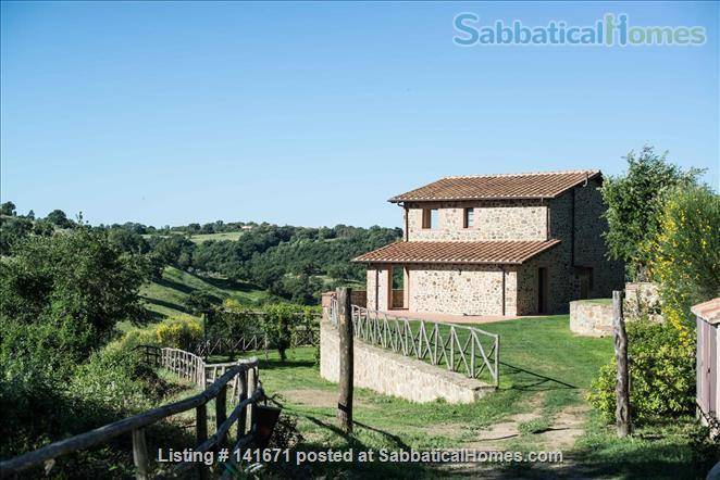Your home with a view in Tuscany Home Rental in Scansano, Tuscany, Italy 0