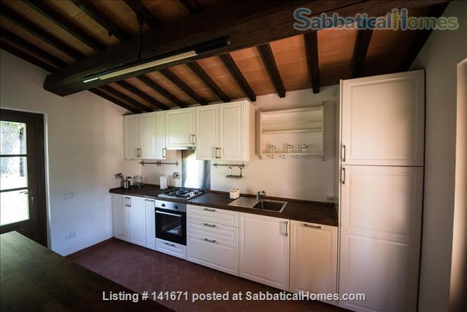 Your home with a view in Tuscany Home Rental in Scansano, Tuscany, Italy 5