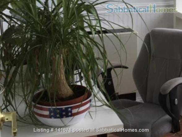 Furnished condo downtown Boston Home Rental in Boston, Massachusetts, United States 7