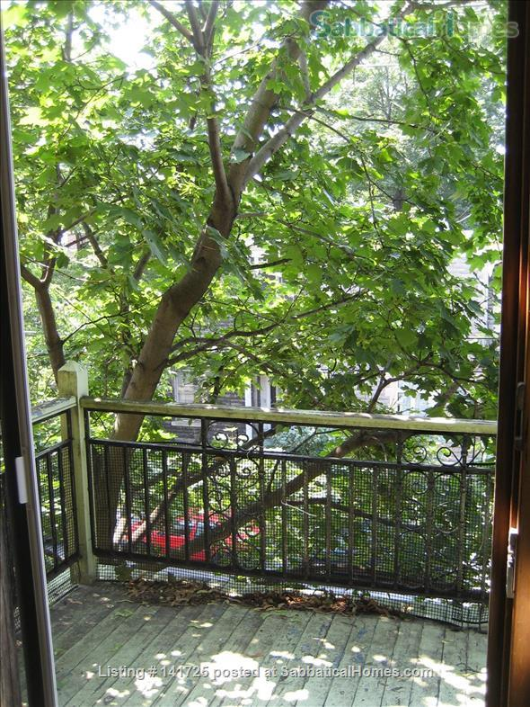 Share Quiet Sunny Apartment in Great Neighborhood Home Rental in Montreal, Quebec, Canada 1