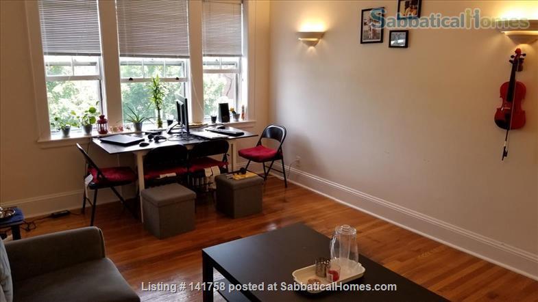 1 Bedroom Condo near Harvard and MIT Home Rental in Cambridge, Massachusetts, United States 7