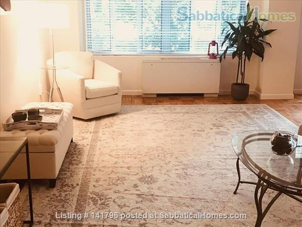 Luxury studio in Dupont Circle Home Rental in Washington, District of Columbia, United States 9