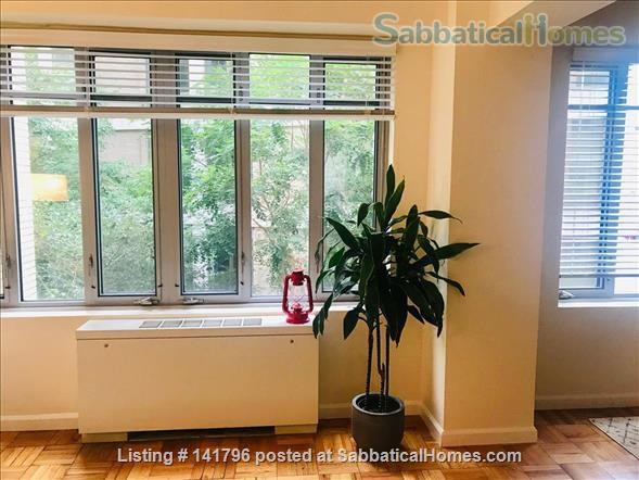 Luxury studio in Dupont Circle Home Rental in Washington, District of Columbia, United States 5
