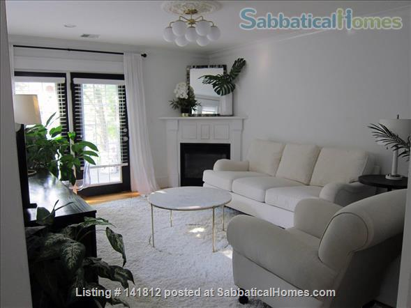 Beautiful, Airy Furnished 1BR in South Boston - steps to the beach! Home Rental in Boston, Massachusetts, United States 3