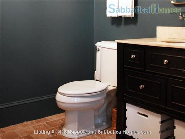 Beautiful, Airy Furnished 1BR in South Boston - steps to the beach! Home Rental in Boston, Massachusetts, United States 6