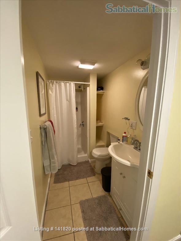 Furnished 1-Bedroom on Griggs Park w/ AC and Laundry  Home Rental in Brookline, Massachusetts, United States 8